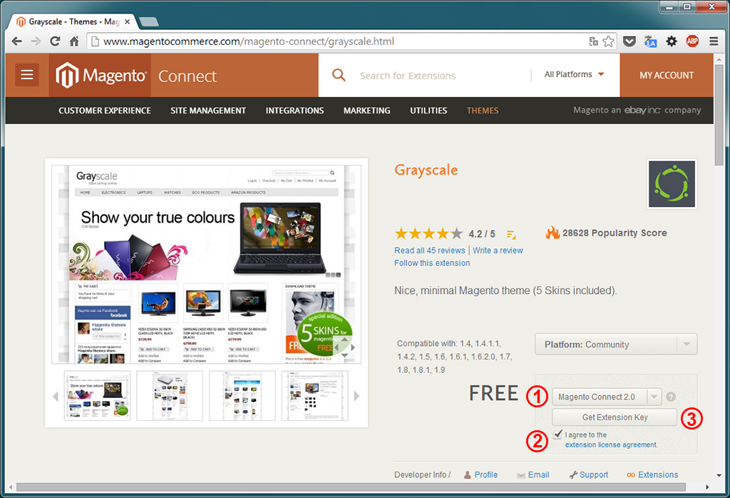 Magento - Install. Theme »Grayscale« (1)
