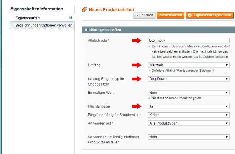 Magento - Produktkategorien & -attribute (3)