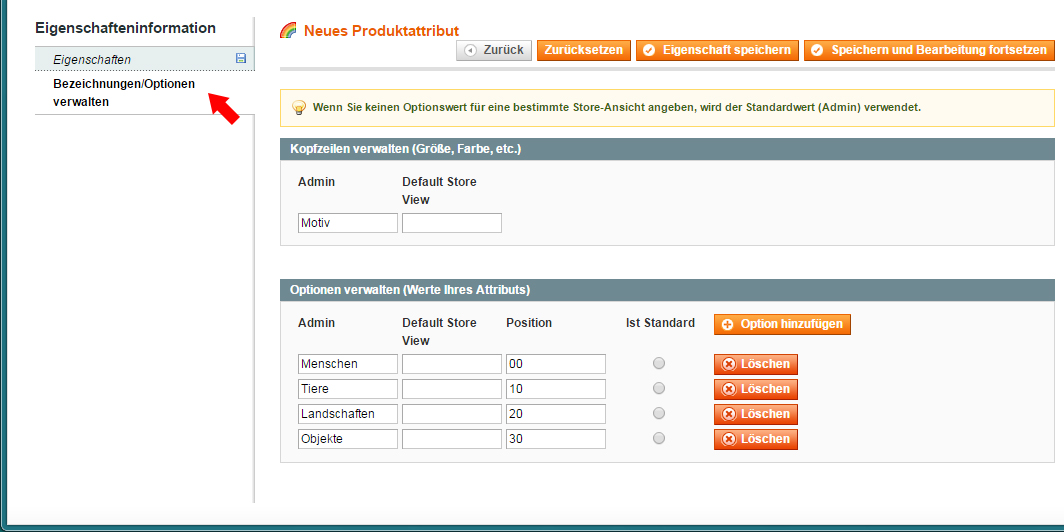 Magento - Produktkategorien & -attribute (5)