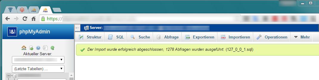 Magento - Serverumzug (10)