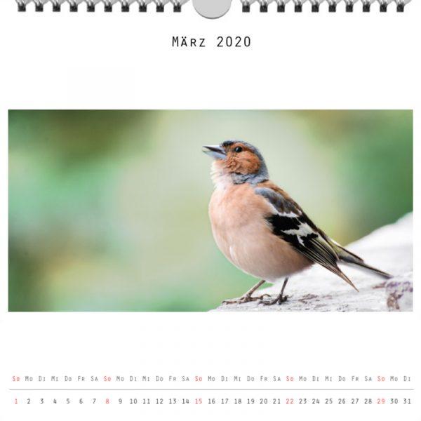 Foto: »Kalender 2020 - Monat März«