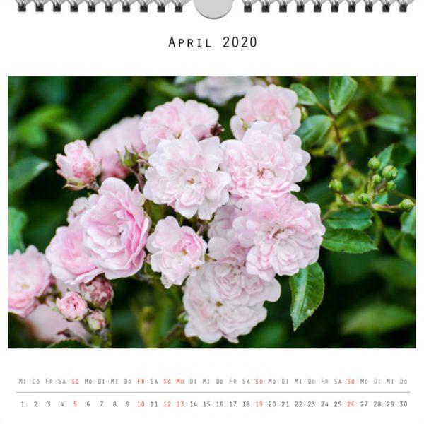 Foto: »Kalender 2020 - Monat April«