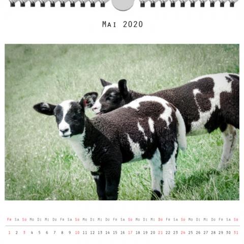Foto: »Kalender 2020 - Monat Mai«