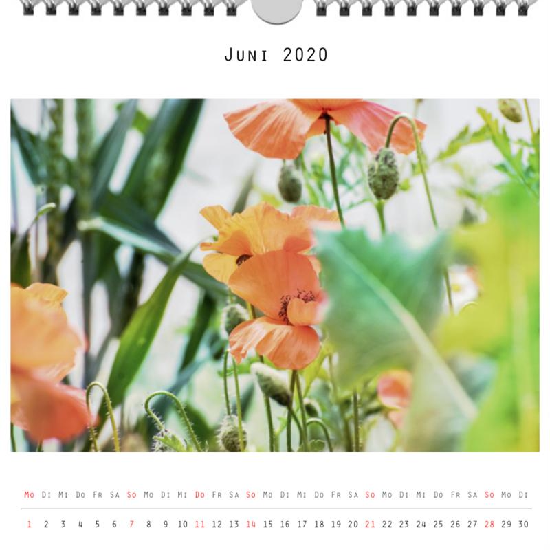 Foto: »Kalender 2020 - Monat Juni«