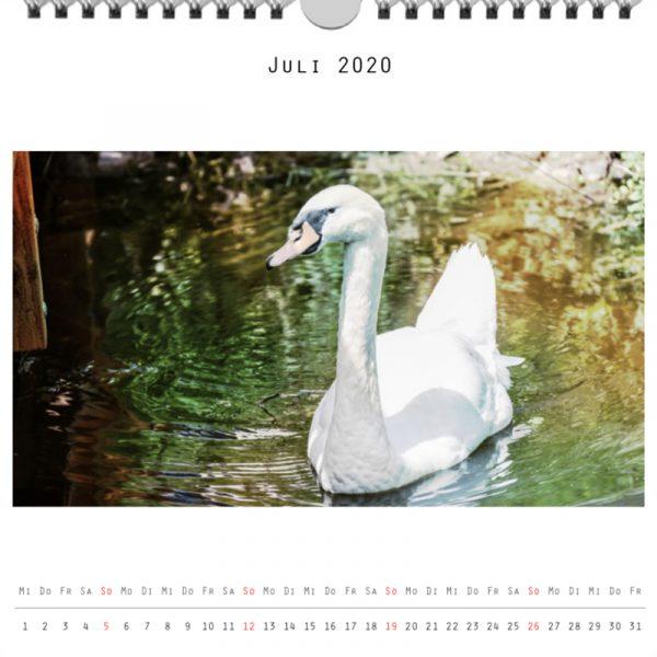 Foto: »Kalender 2020 - Monat Juli«